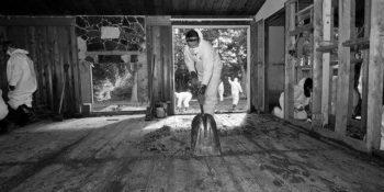 Nettoyage après sinistre
